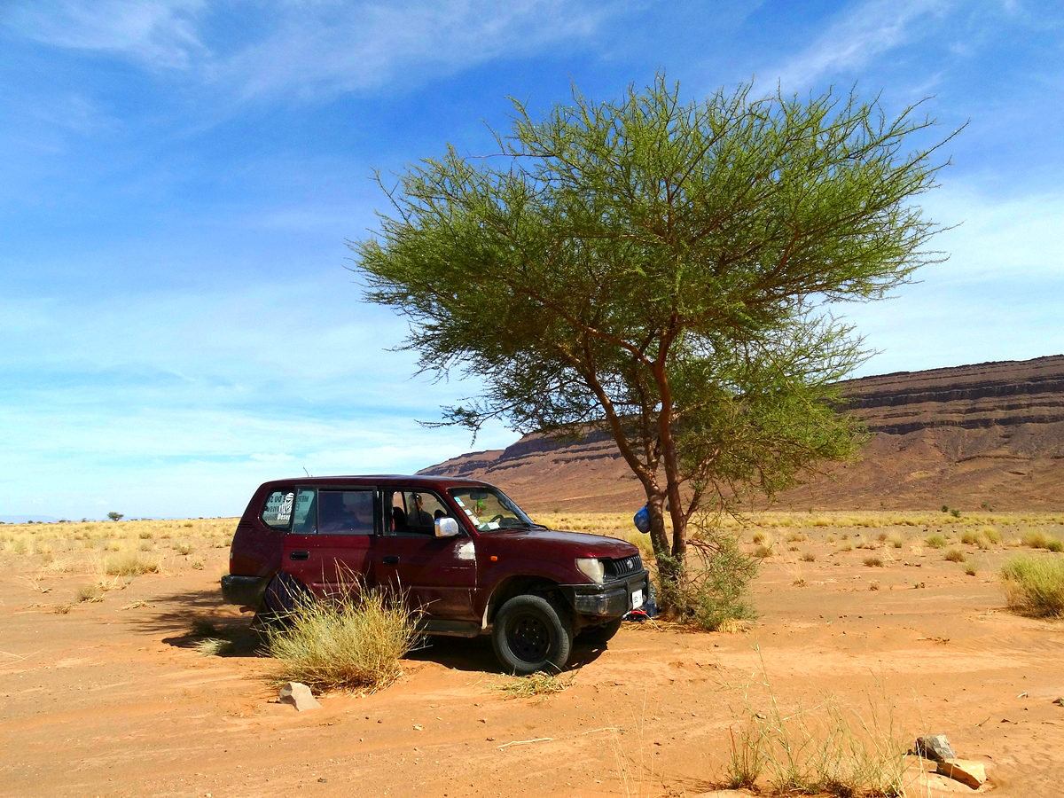 Jeep tour in the desert near the Jbel Bani Mountains, Zagora