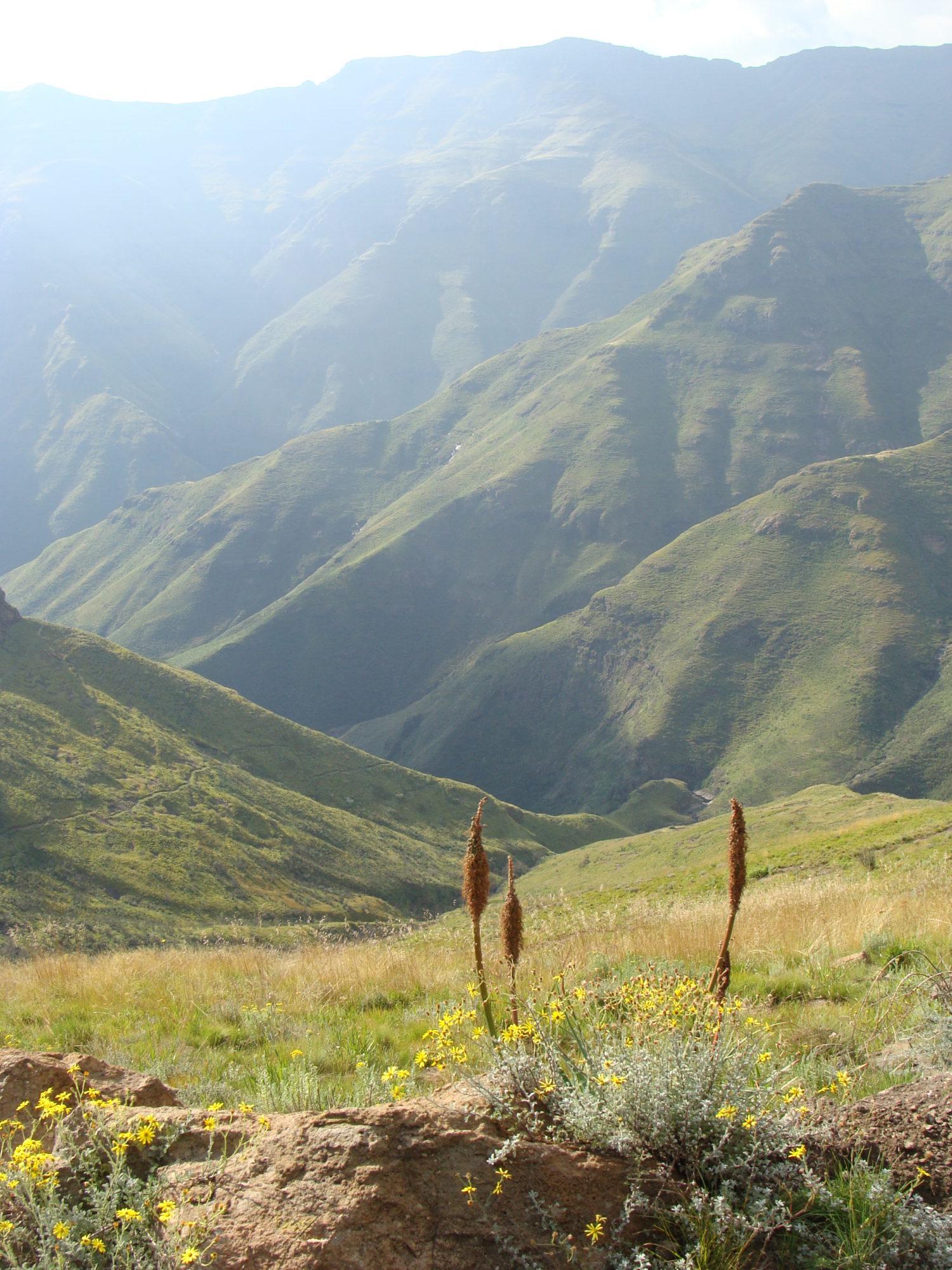Ts'enhlanyane National Park, Lesotho
