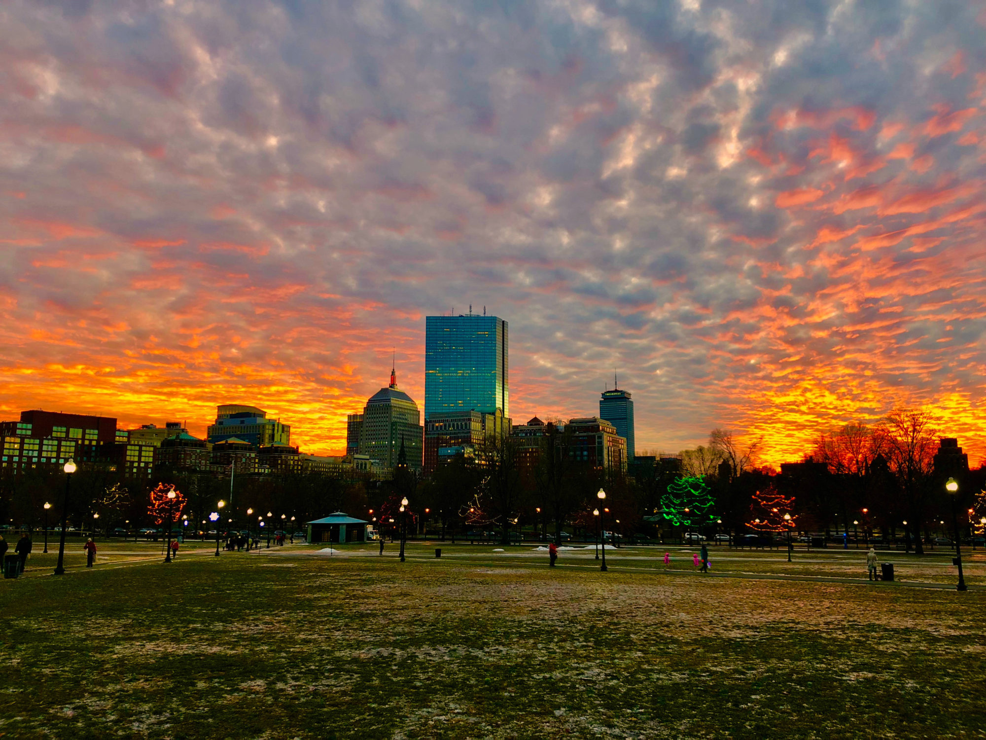 View of Boston from the Boston Common
